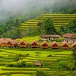 rice terrace and local stilt house in hoang su phi ha giang