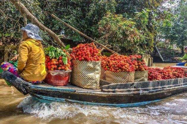 sampan at mekong delta vietnam luxury tours