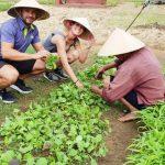 experience hoi an farming tour