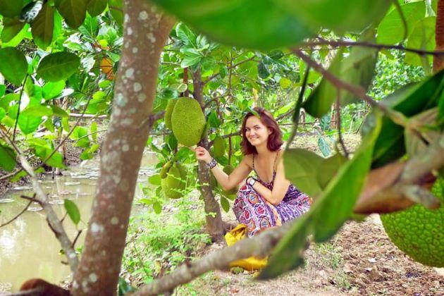 visit fruit orchard in mekong delta